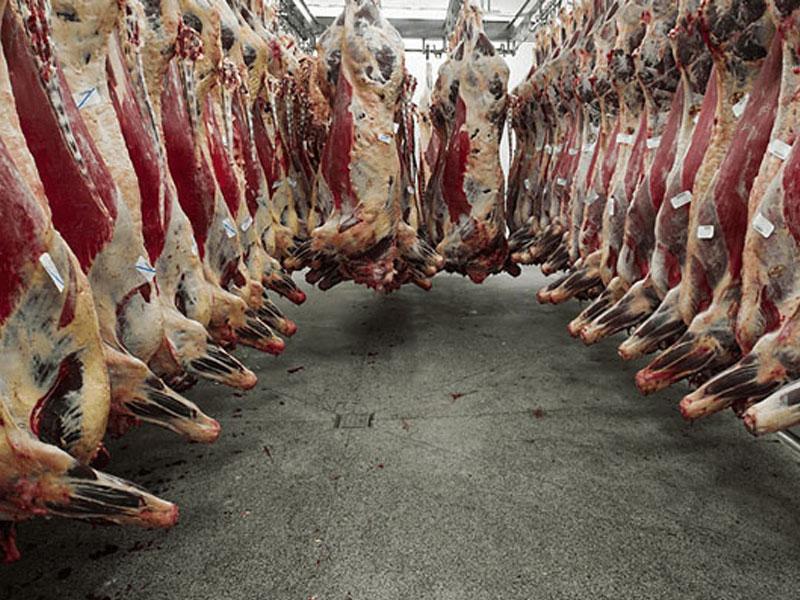 Et İşleme Ve Depolama