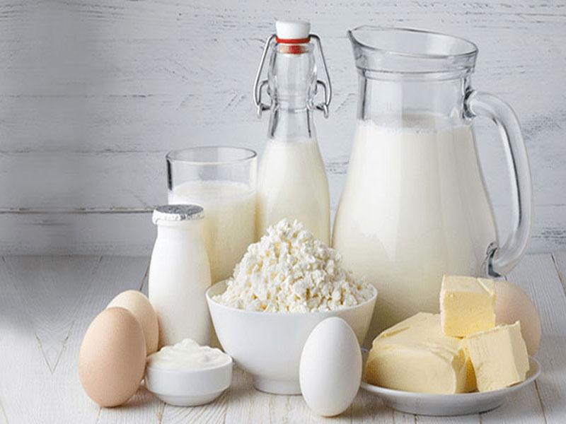 Süt Ürünleri İşleme Ve Depolama
