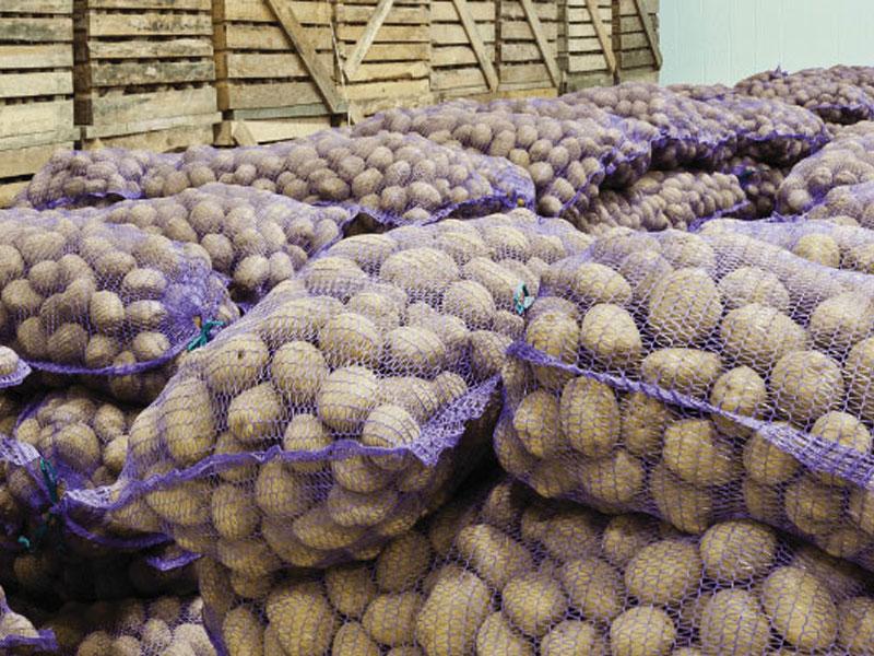 Patates & Soğan Havalandirma Ve Depolama